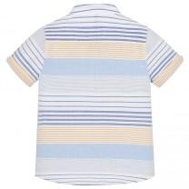 Striped Mandarin Collar Shirt