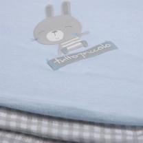 Blue Checkered Rabbit Blanket