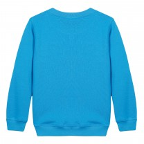 Blue Tiger Cotton Sweatshirt(14 years)