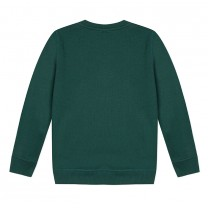 Green Cotton Tiger Sweatshirt (14 years)