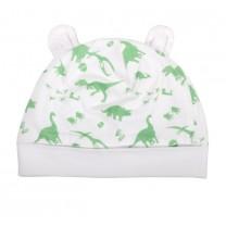 Dinosaur Baby Knit Hat