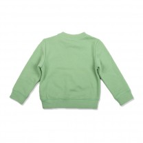 Mint Graphic Baby Sweater