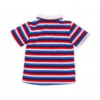 Multicolored Stripes Polo Shirt