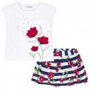 Red and Blue Flower Set