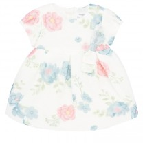 Baby Girl Striped Floral Dress