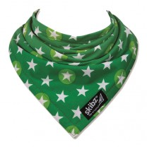 Star Bright Bib