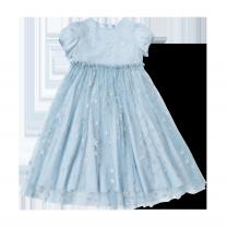 Silver Stars Tulle Dress