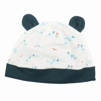 Iceberg Beanie Hat