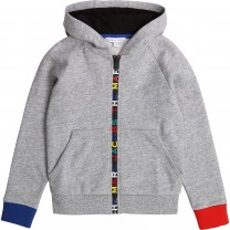 Grey Rainbow Logo Hooded Sweater