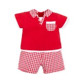 Red Checkered Two Pieces Babygrow