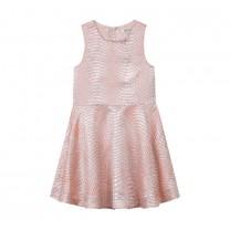 Pink Shiny Dress